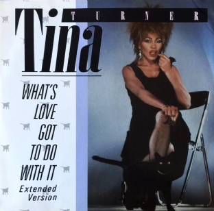 "Tina Turner ‎- What's Love Got To Do With It (12"") (VG-/VG)"
